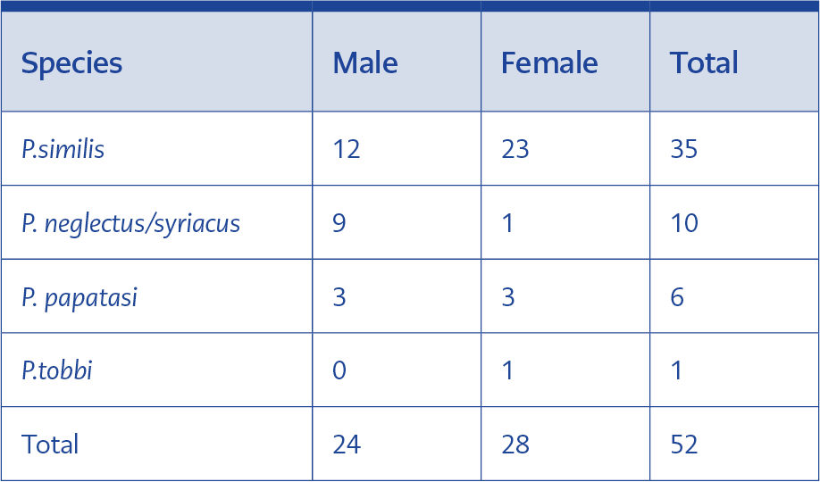 <strong>Table 1.</strong> Distribution of Phlebotomus spp.